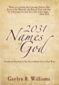 image of the book cover of 2031 Names of God