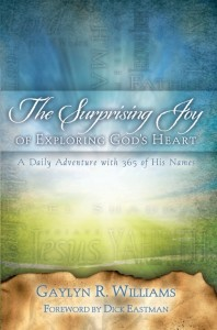 image of the book cover of The Surprising Joy of Exploring God's Heart