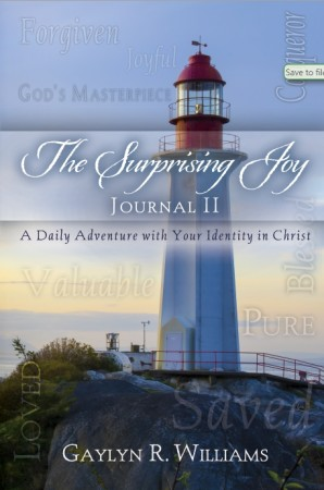 image of Joy Devotional Journal 2 by Gaylyn R. Williams