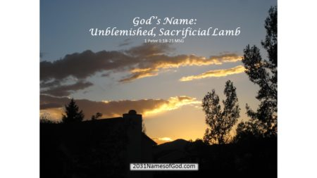 Unblemished, Sacrificial Lamb