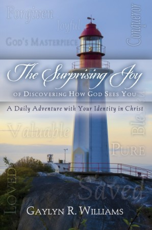 image of The Surprising Joy of Discovering Your Identity in Christ